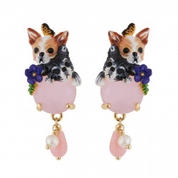 Chihuahuas And Pink Stones...