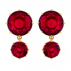 Earrings With 2 Garnet...