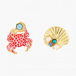 Seashell And Scarlet Crab...