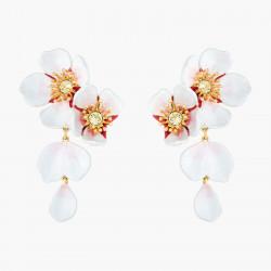 White cherry blossom...