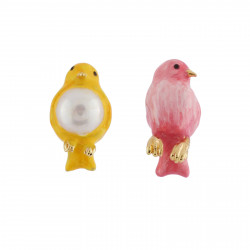 Yellow And Pink Canaries...