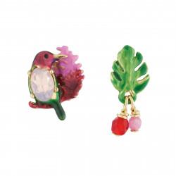 Hummingbird, Exotic Flowers...