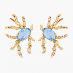 Blue Stone Coral And...